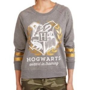 Sweaters - Hogwarts Wizard in Training Pullover Sweater